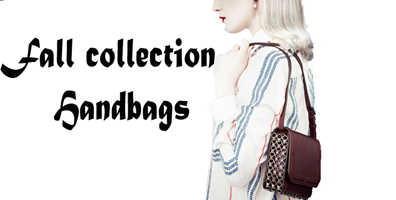 Fall Collection Handbags