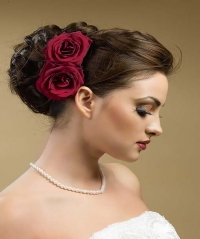 Wedding Hairstyles for 2012