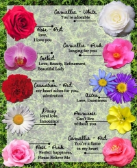 Wedding colors with meaning (Part two)